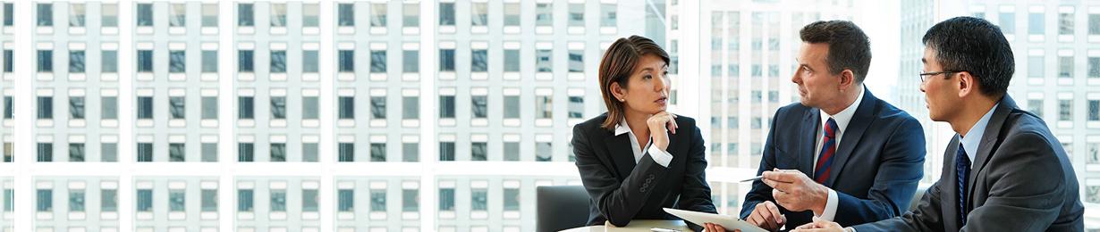 Interim consulting jobs