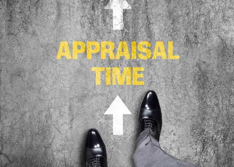 Looking for a performance appraisal sample?
